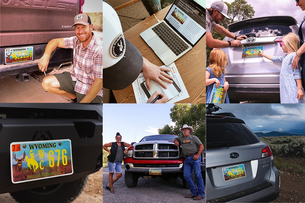 Photos of the Wyoming Conservation Plate Owners