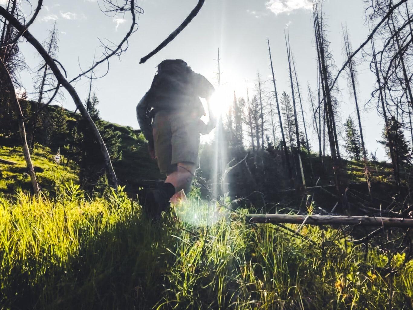 Hiking Bridger Teton National Forest