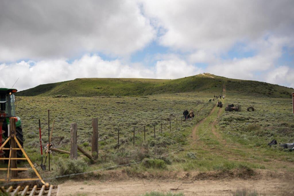 Fences Along the Baggs Winter Range