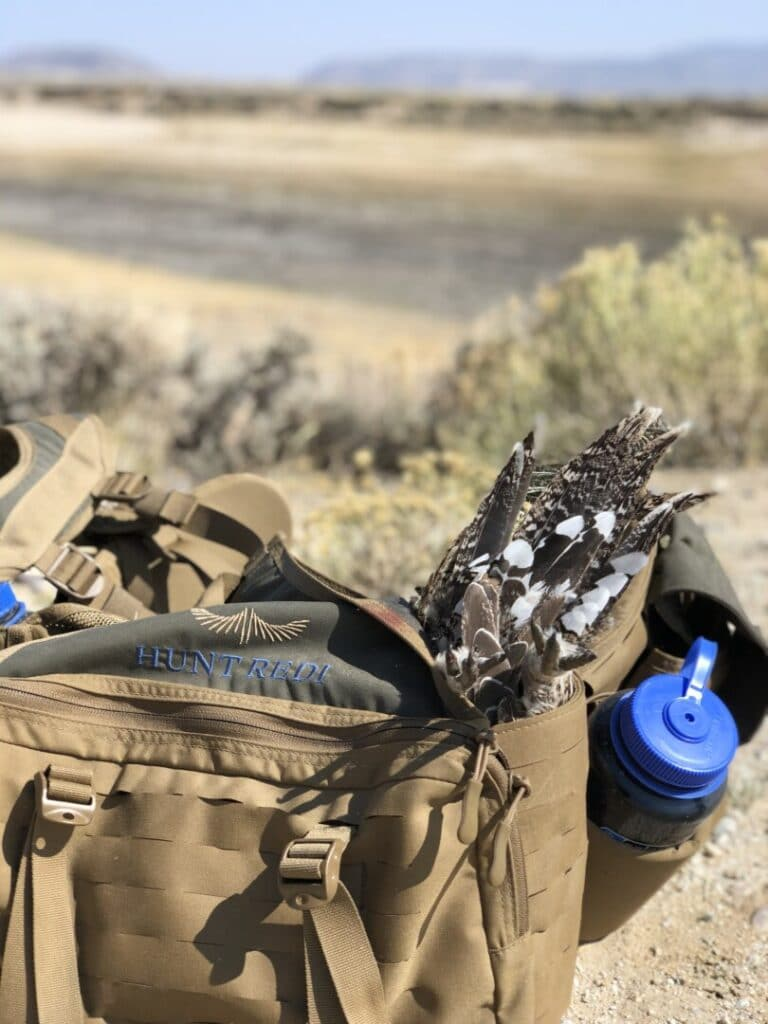 Sage-Grouse in Hunt Redi Bag
