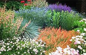 habitat-garden-wyo