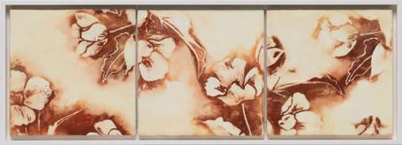 Dusty Blooms