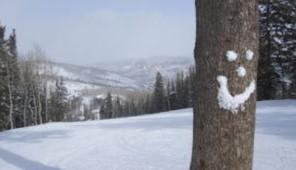 Aspen Cross Country Skiing Tree