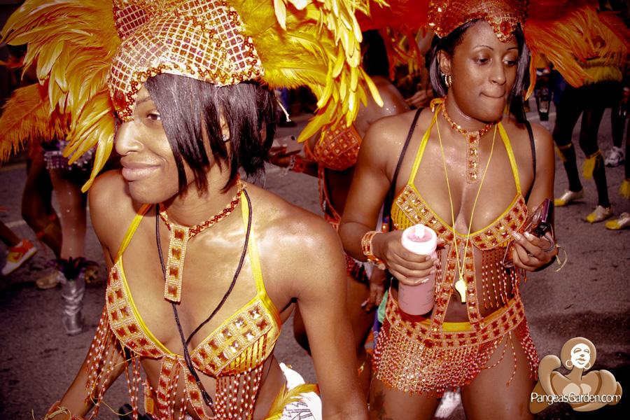 Atlanta Carnival 2010