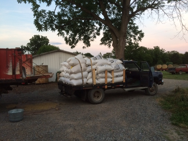 130 bushels of barley ready for delivery