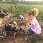 Farm Activities Altoona PA