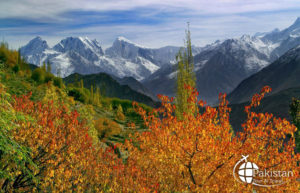 Large View of Nagar Valley in Autumn Season for 2020 & 2021