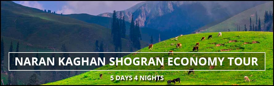 Naran Kaghan Shogran Economy Tour 5Days 4Nights Packages with Prices