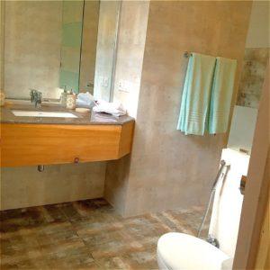 Washroom Grey wall Cottage in naran
