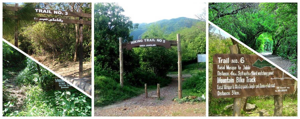 Top-Hiking-Trails-in-Islamabad-