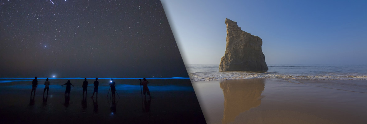 This-Bioluminescent-Beach-in-Pakistan-
