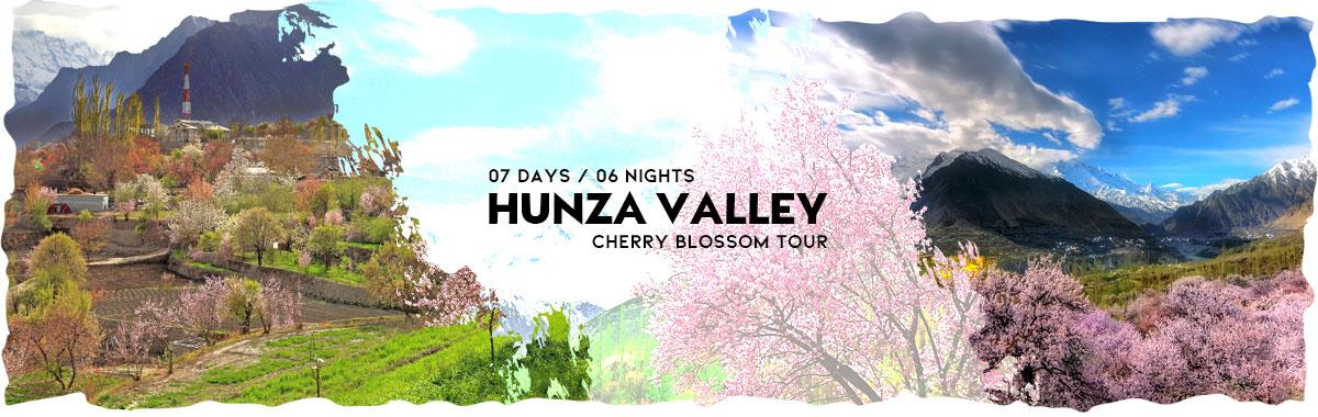 Cherry Blossom March April 2020