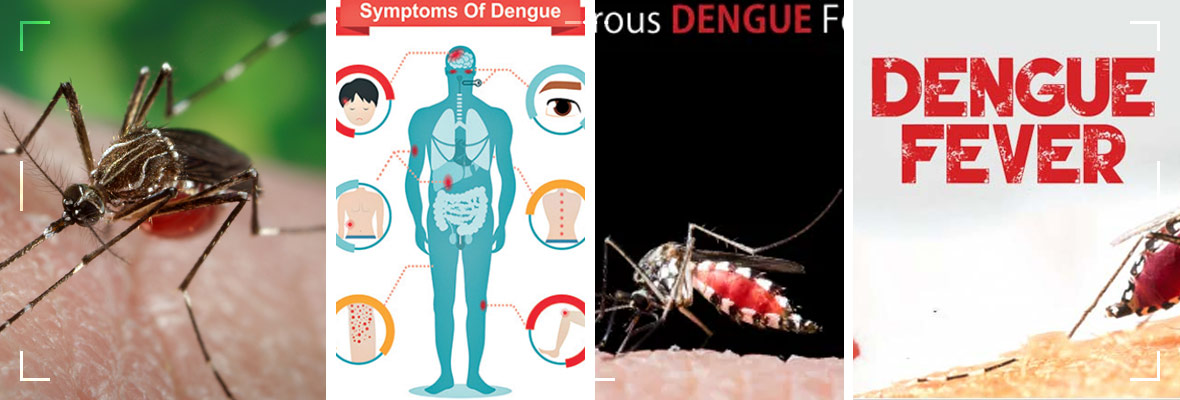 Dengue-Fever;-Protect-Your-Family-With-These-Simple-Precautions