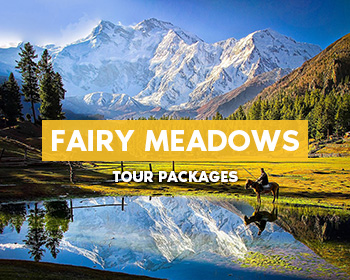 Fairy-Meadows-Tour-Packages