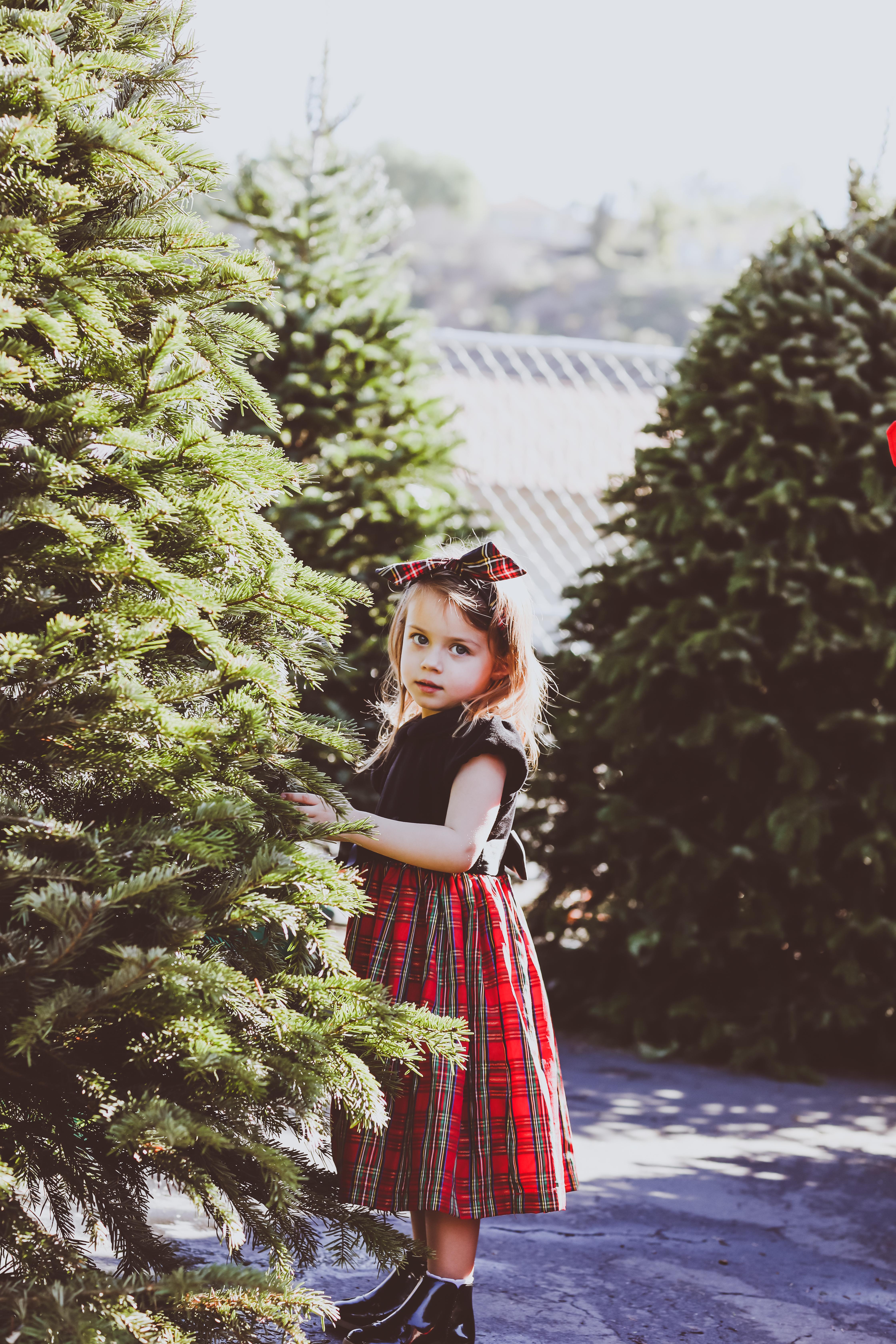 Our Family Christmas Photos 2017 | BondGirlGlam.com