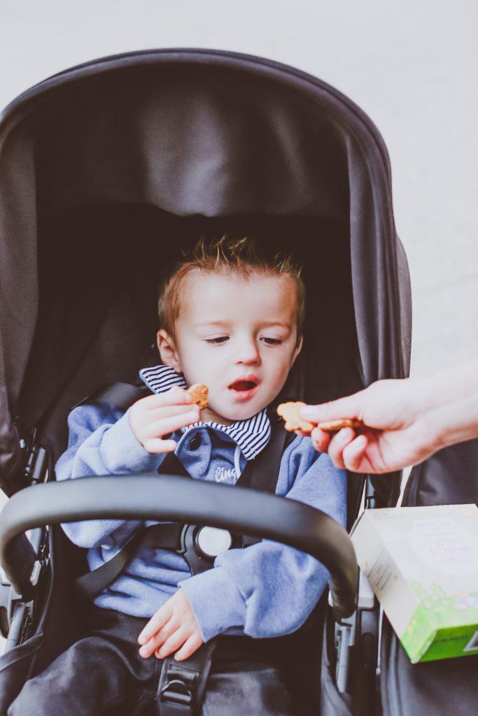 Healthy Times Organic Toddler Cookies Review | BondGirlGlam.com