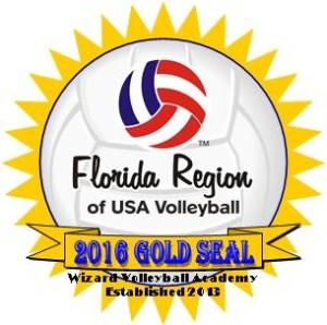 Wizard VB Academy Gold Seal