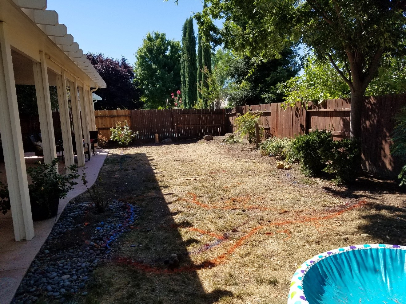 Perspective of Yard where the Pool will be installed