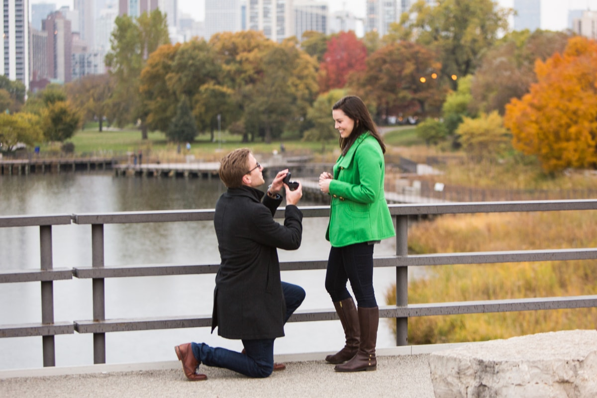 Real life wedding proposal at Lincoln Park Zoo