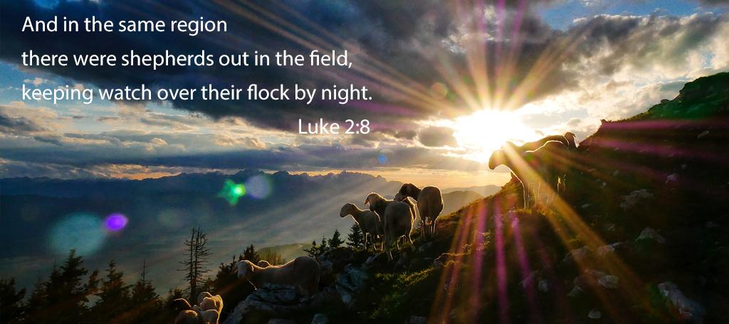 God Chose Shepherds