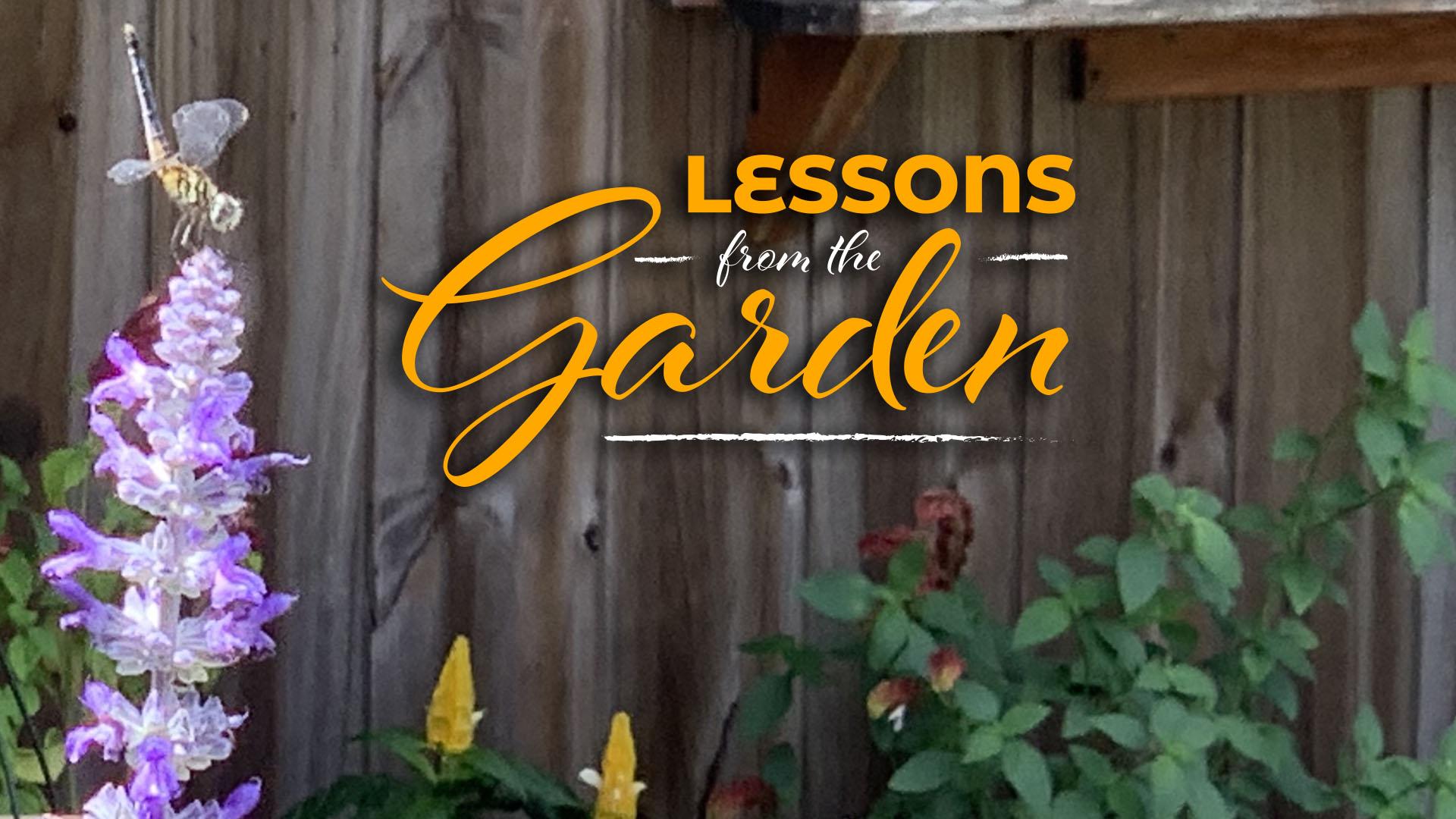 The Song of the Garden