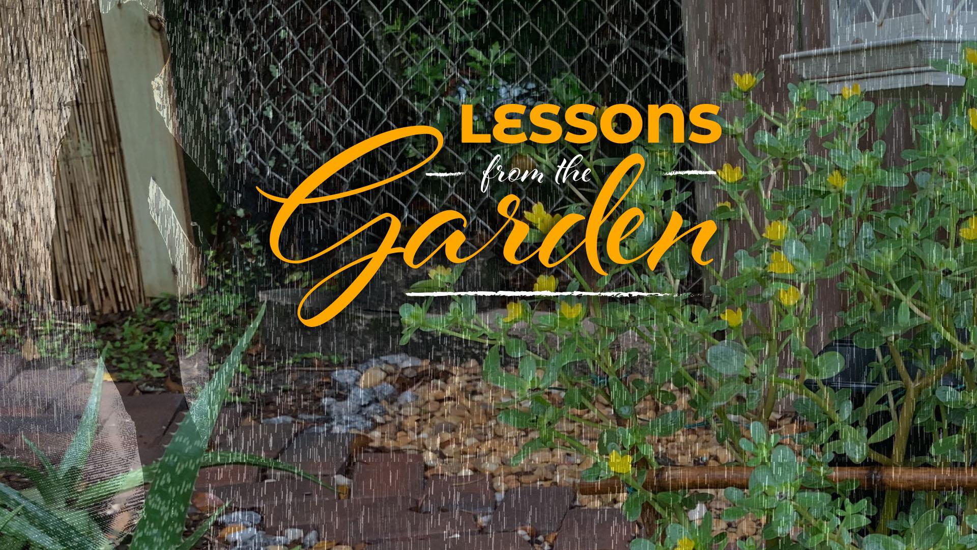 Rejoicing in the Garden