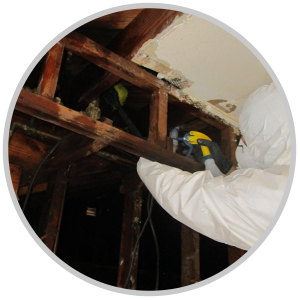 Water Damage Services Millburn NJ