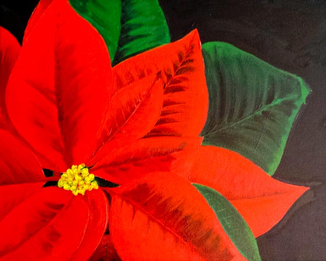 Painting of a large, red poinsettia flower - slightly off-center
