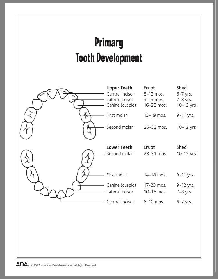 Children's Dental Health Month Fact #2