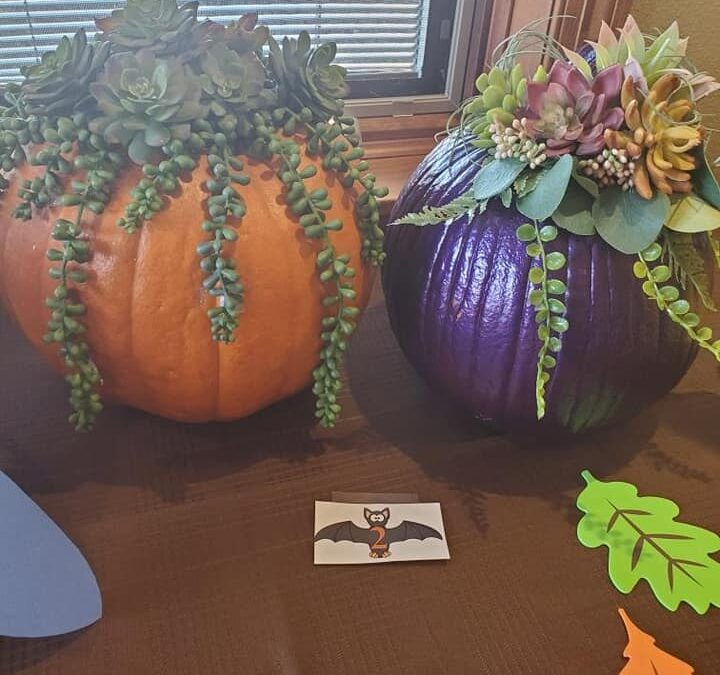 Pumpkin Time – Picking a Winner on Our Facebook Page.