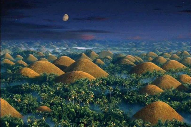 Cebu City Tour + Bohol Countryside Tour