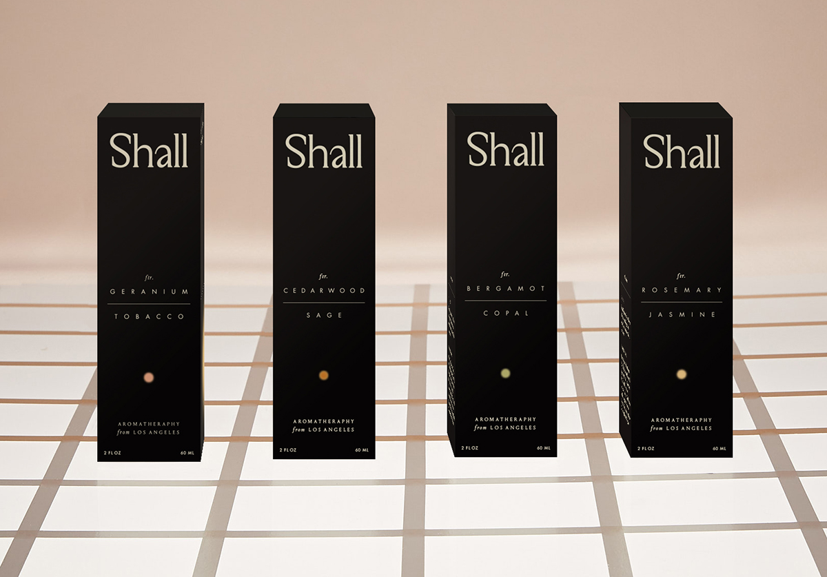 Shall_4Boxes_Web