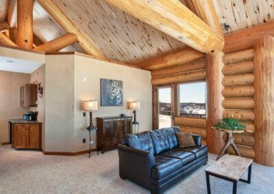 Log Cabin Room High Celing
