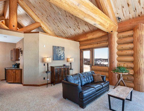Log Cabin Room High Celing