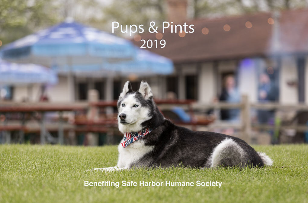 Pups & Pints – Save the Date!