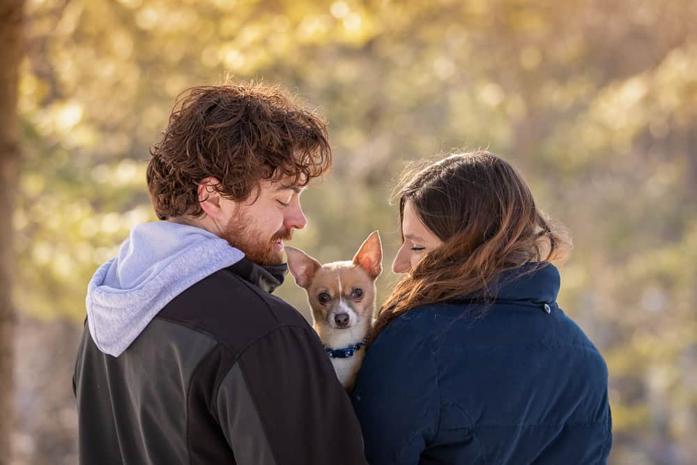 Chihuahua ESA Completes Family Shadow Dog Photography