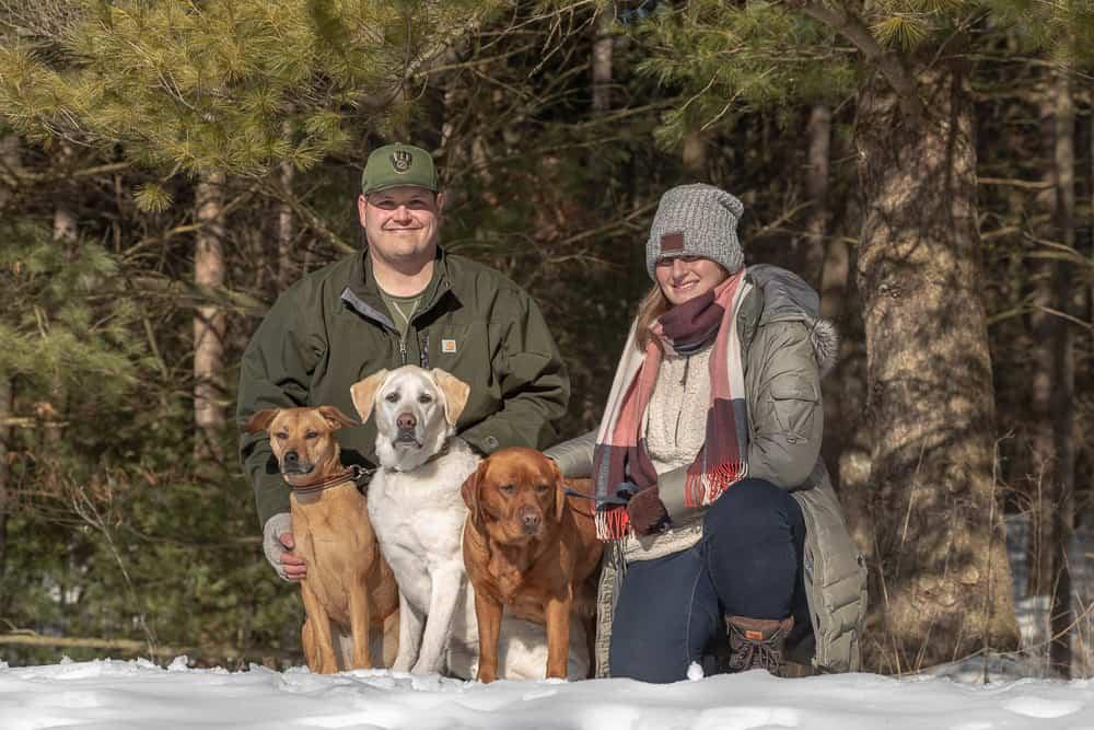Labrador Retriever Shadow Dog Photography