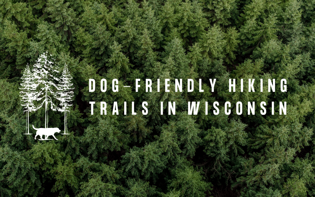 Dog-Friendly Hiking Trails in Wisconsin