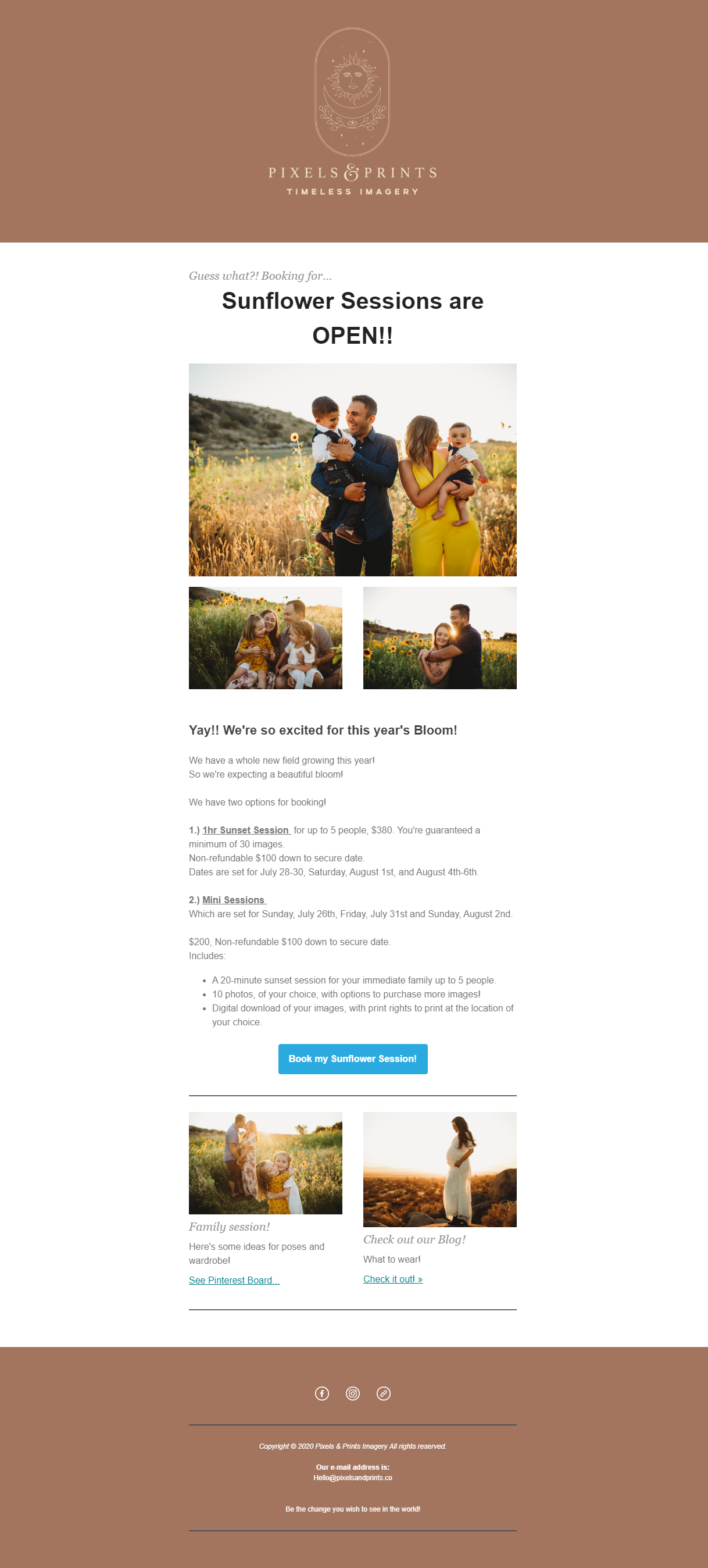 Sunflower Email Example