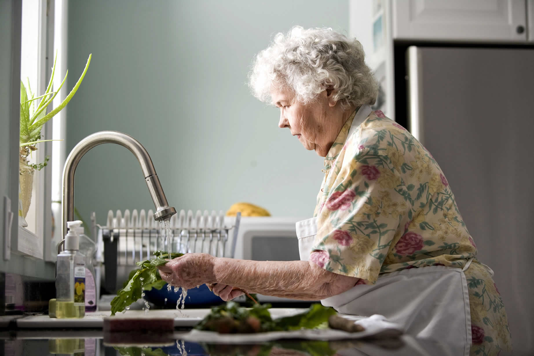 Barriers to Aging in Place