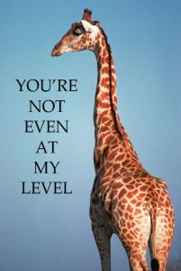 giraffe-not-at-my-level