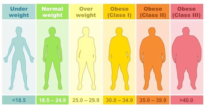 body-mass-index-categories
