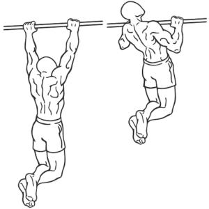 plateau-pull-ups