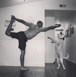 6 foot 8 yogi-5