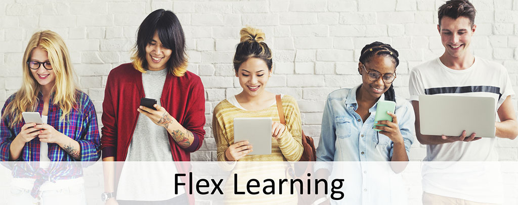 flex-learning-banner
