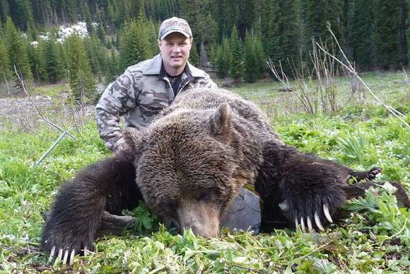 Mtn Grizzly