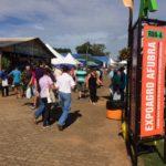 Visitantes terão transporte para o Parque da Expoagro Afubra