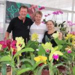 Oficina de cultivo de orquídeas ocorre no final do mês em Mato Leitão