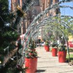 Natal ganha novos espaços de decoração e muito brilho no centro da cidade