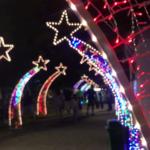 Organização do Natal Cor e Magia avalia edição deste ano